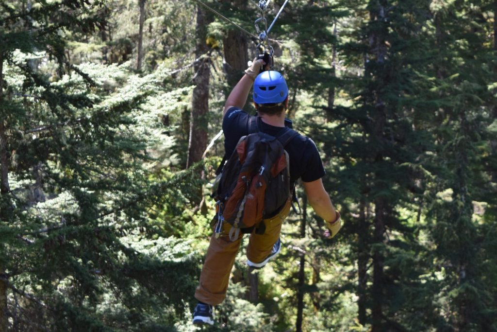 Zip lining in the forest